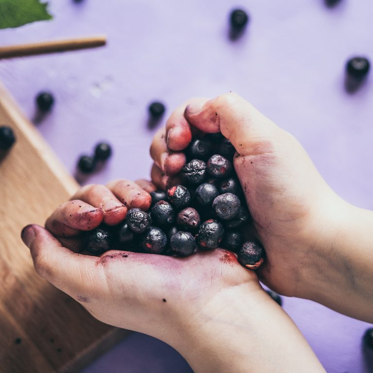 Bilberries are hand-picked from a clean environment, away from polluted areas.