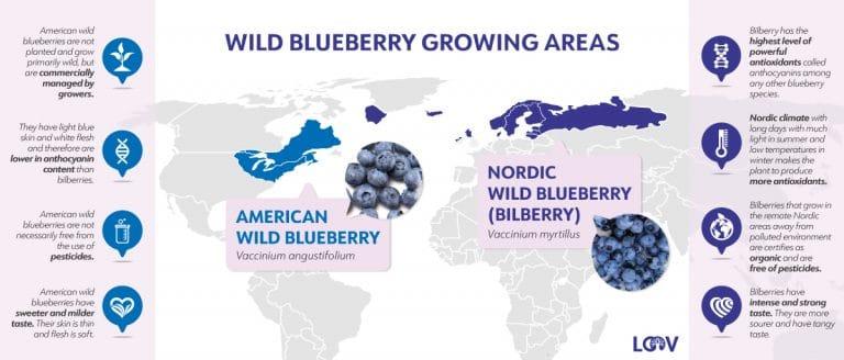 LOOV where blueberry grow map