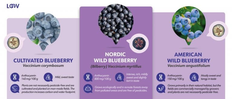 LOOV The difference between blueberries comparing graphic
