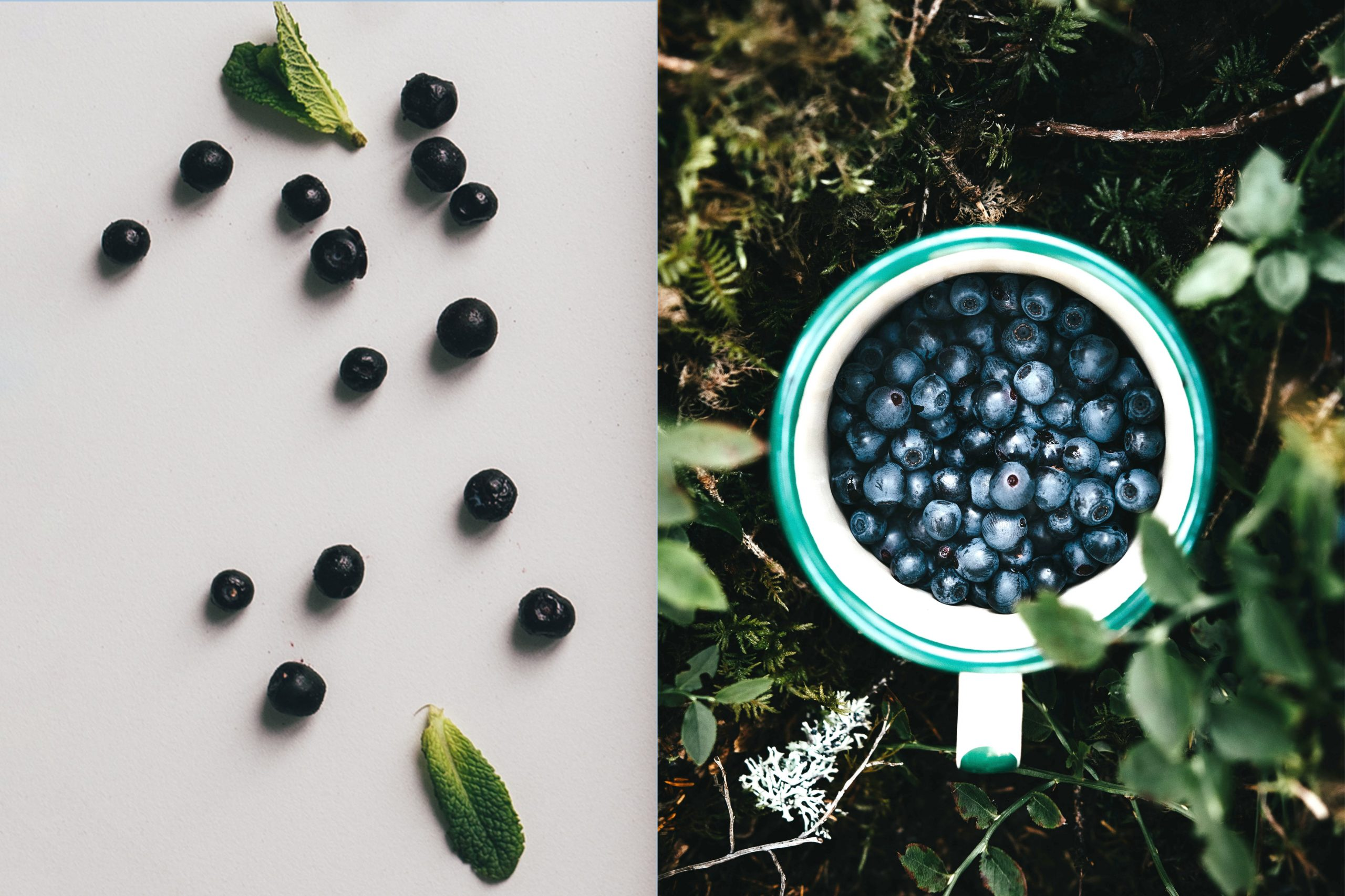 net carbs, low carb, carbs blueberries contains, keto fruits