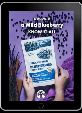 LOOV Blueberry ebook