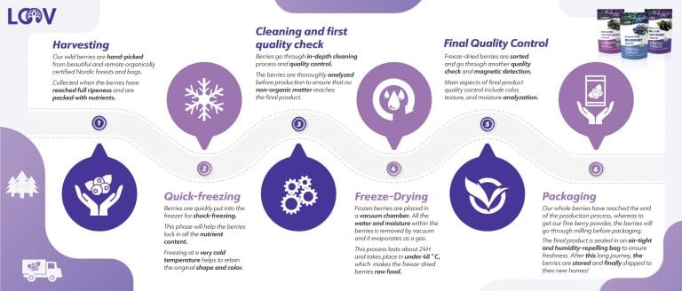 Freeze-Drying food benefits infographic